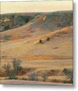 Badlands Prairie Reverie Metal Print