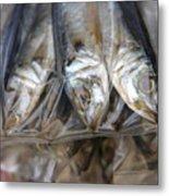 Bag O' Fish 2 Metal Print