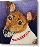 Bailey Terrier Mix Metal Print