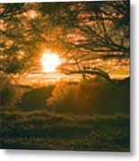 Baja Sunset Metal Print