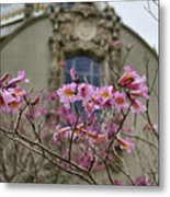 Balboa Park Building And Spring Flowers - San Diego Metal Print