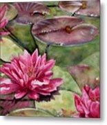 Balboa Water Lilies Metal Print