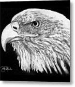 Bald Eagle #4 Metal Print