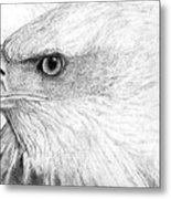 Bald Eagle Profile Metal Print