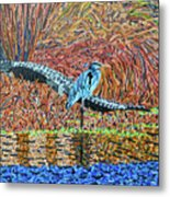 Bald Head Island, Gator, Blue Heron Metal Print