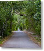 Bald Head Island Study 5 Metal Print