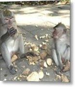 Balinese Monkeys Eating Metal Print