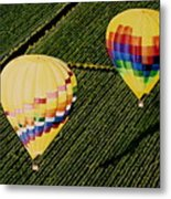 Balloons Over Napa Valley Metal Print by Cindy Lee Longhini
