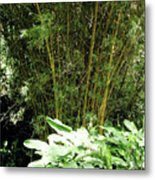 F8 Bamboo Metal Print