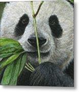 Bamboo Foodie Metal Print
