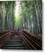 Bamboo Forest Of Japan Metal Print by Daniel Hagerman