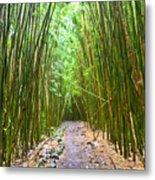 Bamboo Forest Trail Hana Maui 2 Metal Print