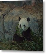 Bamboo Thats For Dinner Metal Print