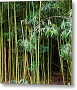 Bamboo Wind Chimes  Waimoku Falls Trail  Hana  Maui Hawaii Metal Print