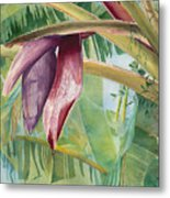 Banana Flower Metal Print