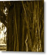 Banyan Surfer - Triptych  Part 1 Of 3 Metal Print