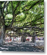 Banyan Tree Metal Print