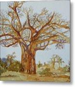 Baobab Tree Of Africa Metal Print