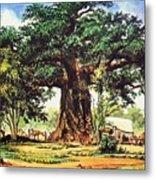 Baobab Tree - South Africa Metal Print