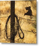 Barbed Landing Metal Print