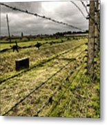 Barbed Wire Fence Metal Print