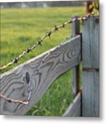 Barbed Wire Metal Print