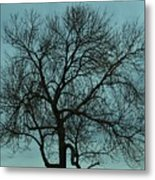 Bare Branches And Storm Clouds Metal Print