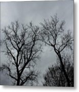 Bare, Raw, Cold Winter Day  Metal Print