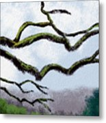 Bare Tree Branches Metal Print