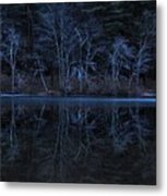 Bare Trees Reflected Metal Print