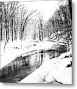 Bare Winter Branches Metal Print