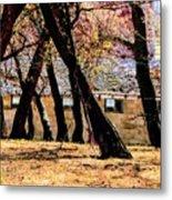 Barn Behind Trees Metal Print