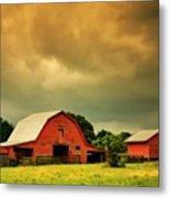 Barn in the USA, South Carolina Metal Print