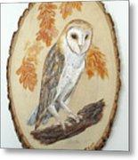 Barn Owl - Enduring Insight Metal Print