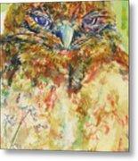 Barn Owl Thinking Metal Print