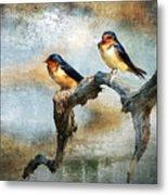 Barn Swallows Oil Metal Print