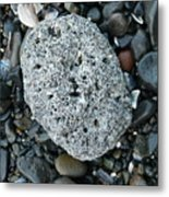 Barnacle Rock Metal Print