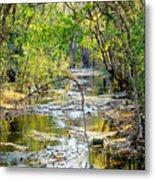 Barren Fork Creek Metal Print
