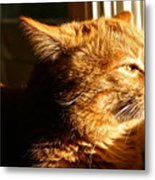 Bart The Cat Metal Print