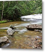 Bartlett Experimental Forest - Bartlett New Hampshire Usa Metal Print by Erin Paul Donovan