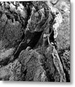 Basalt Textures Metal Print