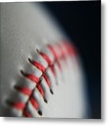 Baseball Fan Metal Print