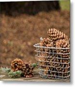 Basket Of Cones Metal Print