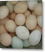 Basket Of Eggs  Metal Print