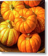 Basket Of Pumpkins Metal Print