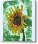 Basking In The Sun Metal Print
