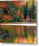 Pond In Autumn Metal Print