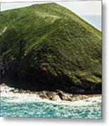 Bass Strait Island Wilderness Metal Print