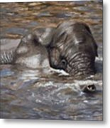 Bath Time - African Elephant In The Water Metal Print