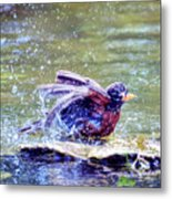 Bathing Beauty Metal Print